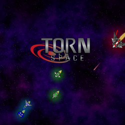 Torn.space